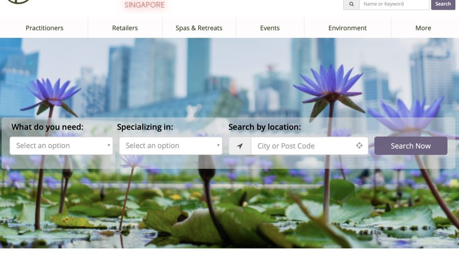 WellBeing Specialists SG Directory